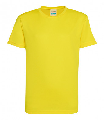 P.E T-shirt - Attenborough house (Yellow)