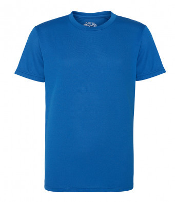 Eskdale P.E T-shirt - Wollaton house (Blue)